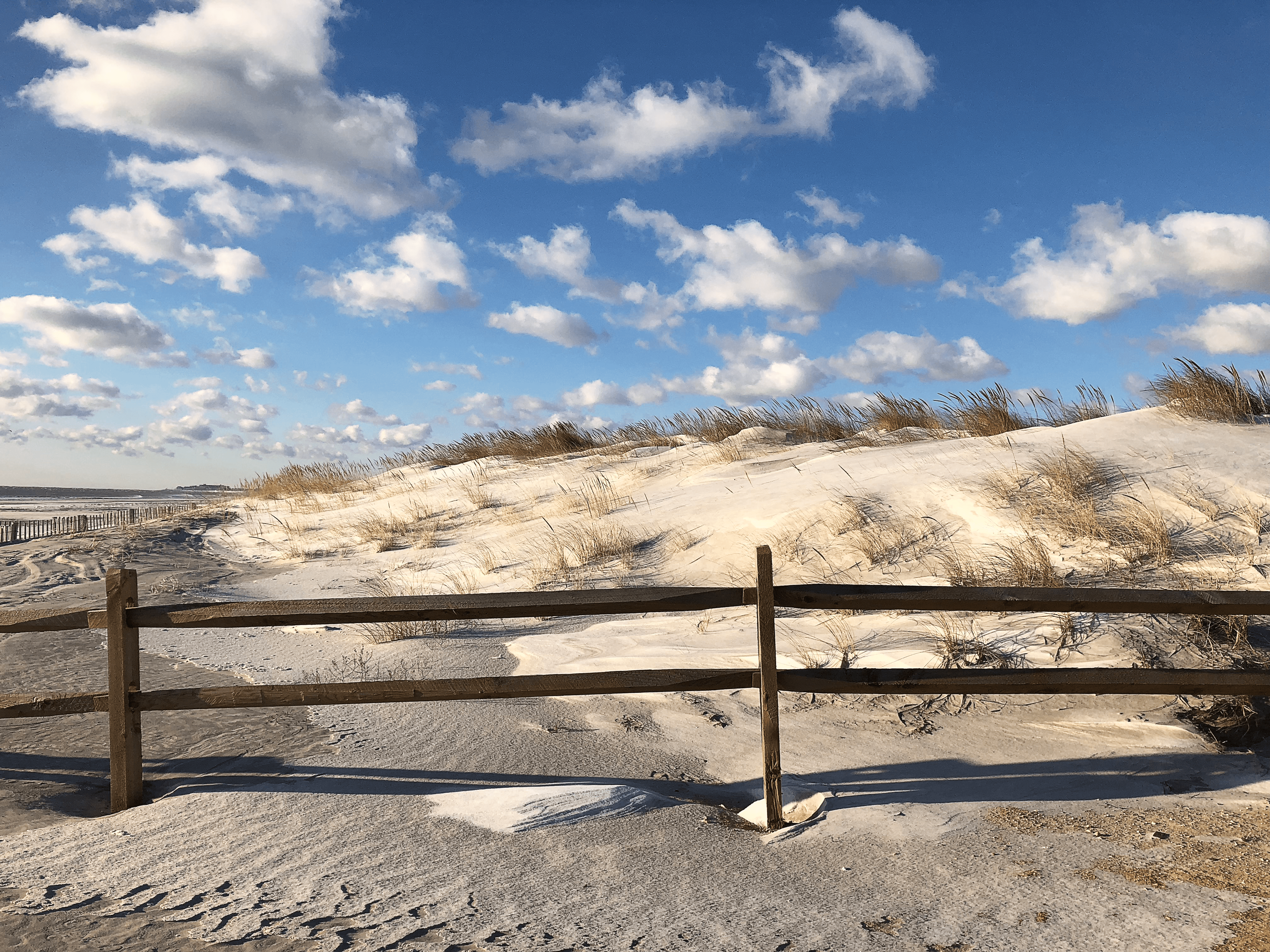 home-page-dunes